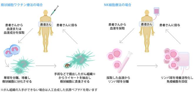 樹状細胞ワクチン療法の場合とNK細胞療法の場合の比較